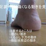 足底腱膜炎になる足の動き 踵編